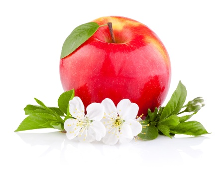 Single Red Apples with Leaf and Flowers isolated on a white background