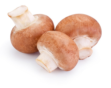 Three Fresh field mushroom isolated on white background