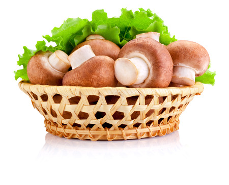 Fresh field mushroom in basket and Leaves of green salad Isolated on white background photo