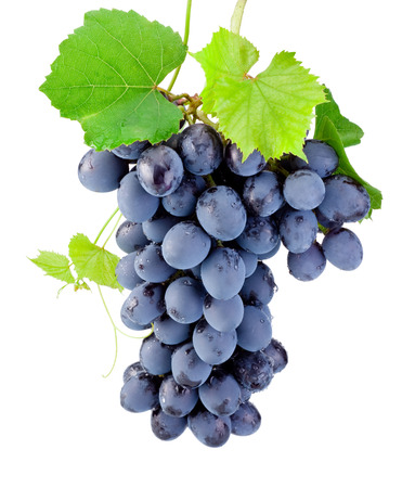 Fresh bunch of grapes with leaves isolated on a white background photo