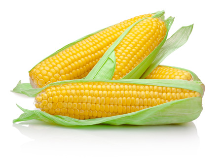 Fresh corn cob isolated on white background