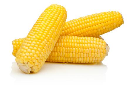 mazorca de maiz: Maíz en la mazorca de los núcleos pelado aislado en un fondo blanco