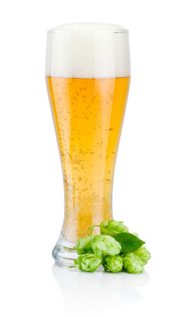 Glass of fresh beer with green hops isolated on white background
