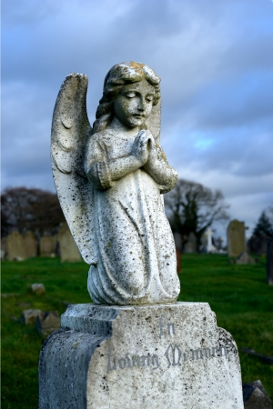 angel cemetery: Angel with wings above headstones in cemetery