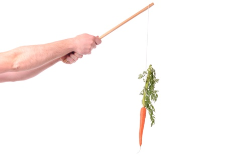 motivation of dangling a carrot on a stick isolated on white Stock Photo