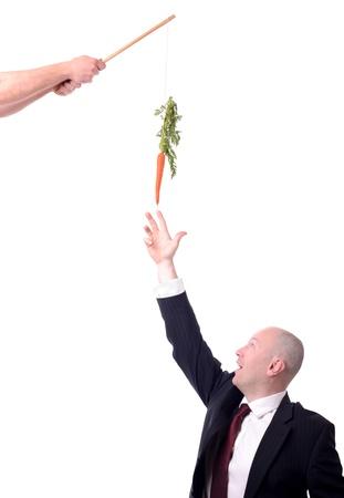 zanahorias: la motivaci?n de los que cuelga una zanahoria en un palo aislado en blanco