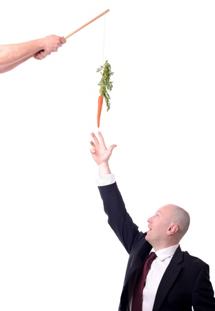 perks: motivation of dangling a carrot on a stick isolated on white Stock Photo