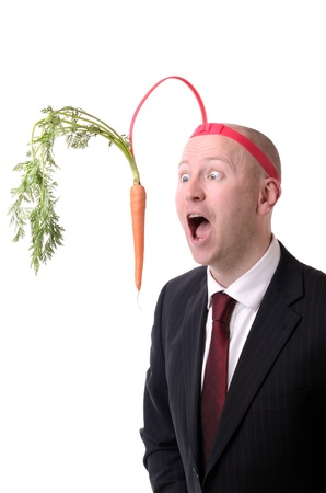 self motivation of dangling a carrot on a stick isolated on white Standard-Bild