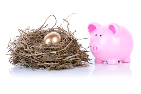 piggy bank looking after golden egg in nest isolated on white photo