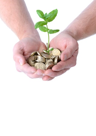 hands holding a heap of coins with a plant growing out from them, concept of money growth, isolated on white background photo