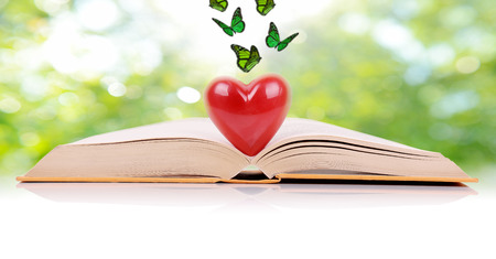 The book of love, a book open with a heart in the middle isolated on a green spring background photo