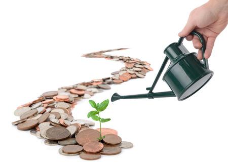 siembra: Caoncept de hacer crecer el dinero, aislado en blanco