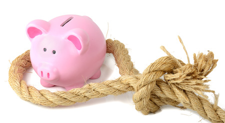 finacial: piggy bank caught in a finacial trap