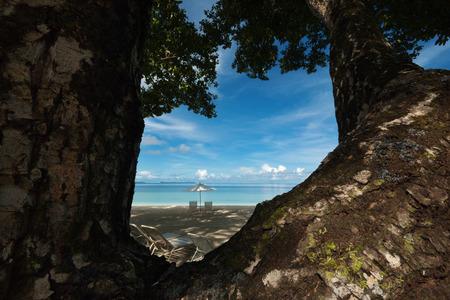 redang: Beautiful tree and seascape. Stock Photo