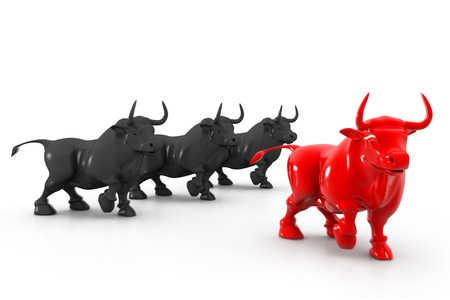bullish: Business bull  Stock Photo