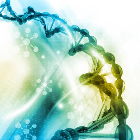 stem: La structure de l'ADN Banque d'images