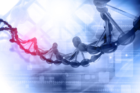 dna structure: Digital illustration of DNA Stock Photo