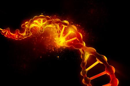 Digital illustration of DNA structure