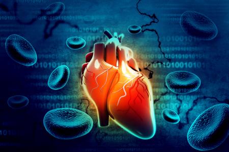 Human heart Stock fotó - 45016389