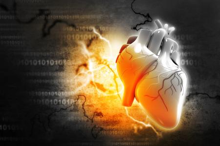 cell body: Digital illustration of Human heart Stock Photo