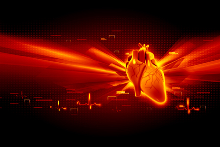 medical person: Human heart