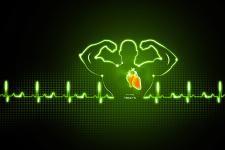 listening to heartbeat: Healthy heart background