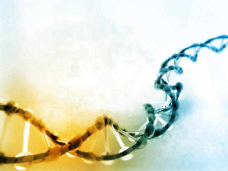tige: Illustration numérique de l'ADN