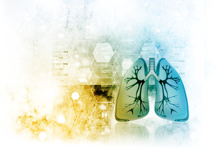 Human lungs in scientific background