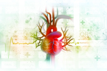 ECG  with human heart