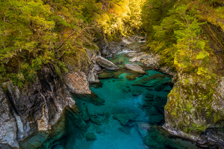 Blue River at Blue Pools track in the South Island of New Zealand. Blue pool track is a short walk from State Highway 6, Haast Pass