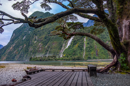 Milford Sound (Piopiotahi) is a famous attraction in the Fiordland National Park, New Zealands South