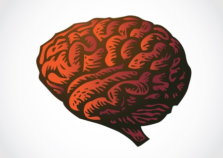 human brain isolated reallistic illustration Vector