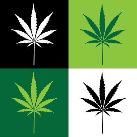 marihuana leaf: cuatro cannabis ilustraci�n de la hoja