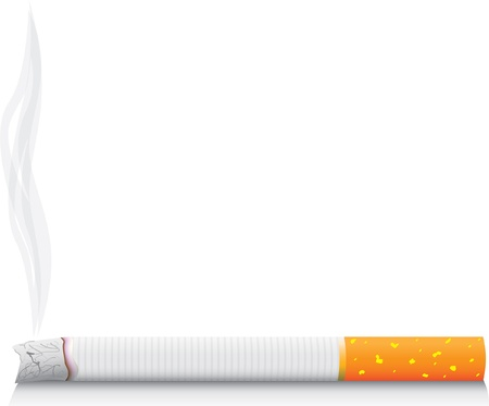 cigarette smoke: eps8 vector isolated smoking cigarette - detailed realistic illustration