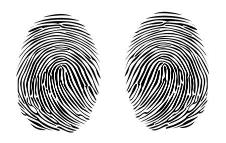 two fingerprints detailed illustration Vector