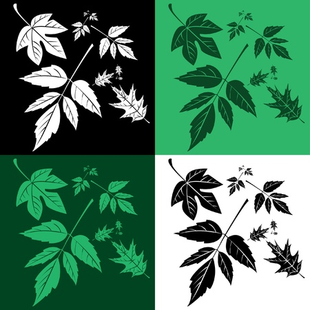 set of leafs in pop-art - illustration Stock Vector - 11980747