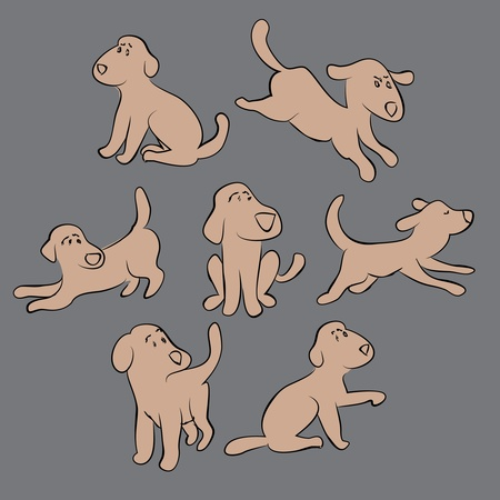 retriever: set of cute puppies - isolated illustration