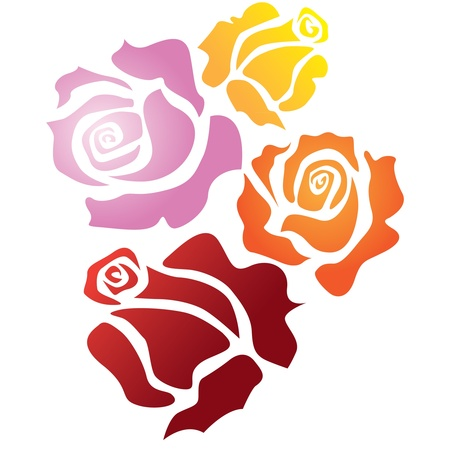 four color roses - sketch illustration Vector