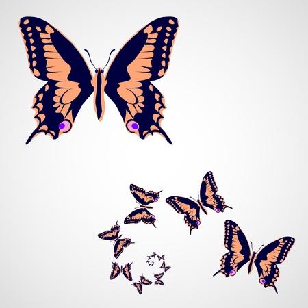 butterflies in spiral - illustration