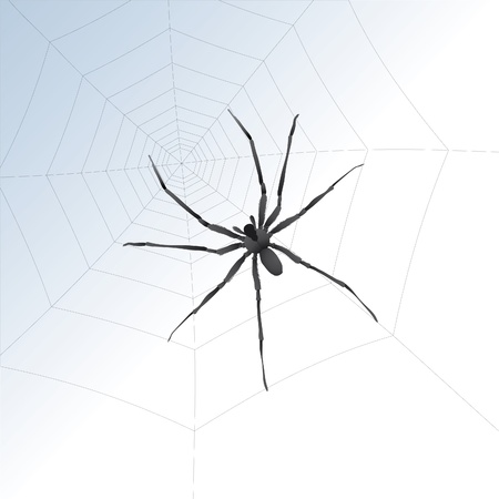 crawly:  illustration of a big spider on a web