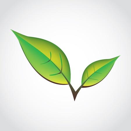 green spring leafs - isolated illustration Иллюстрация