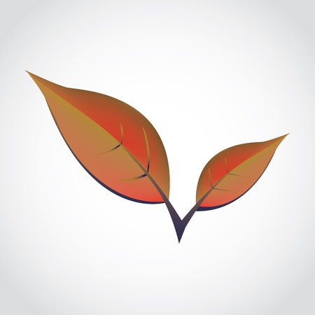 orange spring leafs - isolated illustration Vector
