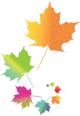 Autumn color leafs in space - isolated illustration Vector