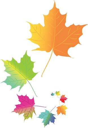 autumn leaf frame: Hojas de oto�o de colores en el espacio - ilustraci�n