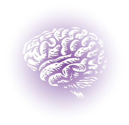 cortex: whole human brain isolated - illustration Illustration