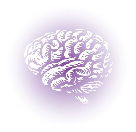 whole human brain isolated - illustration Illusztráció