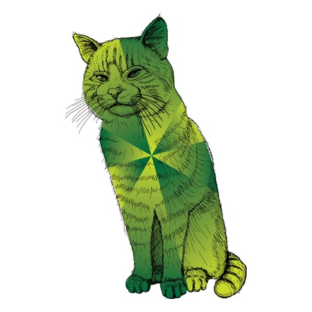 isolated sitting multicolored cat on white - illustration Vector