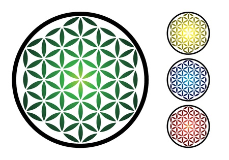 set of flower of life symbol - illustration Vector