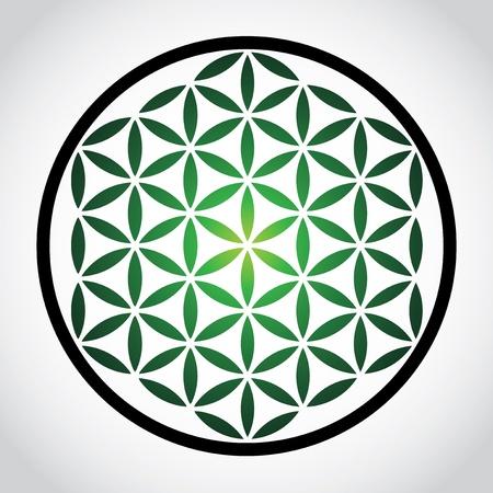 yin y yan: flor símbolo de la vida - ilustración