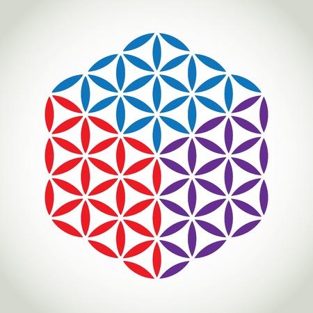 symol: flower of life symbol color cube - illustration Illustration